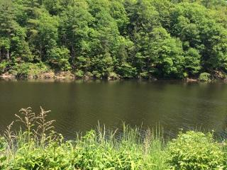 Beautiful Home on The Esopus Creek - Saugerties vacation rentals