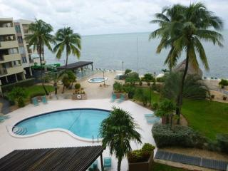 THE PALMS 407 - Islamorada vacation rentals