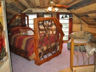 Hoot Owl Cabin in the Heart of Apple Country - Hendersonville vacation rentals