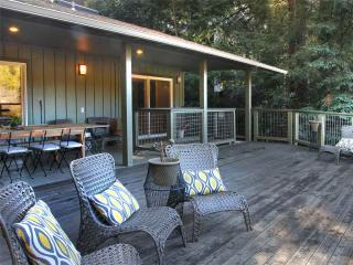 Sunny 4 bedroom Guerneville House with Internet Access - Guerneville vacation rentals