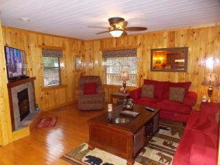Perfect Cabin with Internet Access and Dishwasher - Tennessee vacation rentals