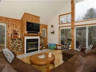 Perfect 8 bedroom House in Stowe - Stowe vacation rentals