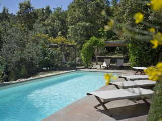 Charming 6 bedroom Villa in Rignano sull'Arno - Rignano sull'Arno vacation rentals