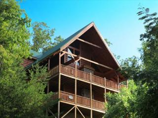 Above it All, Steam Shower, Arcade, Dogs OK, Two Hot Tubs, Wheelchair Ramp - Gatlinburg vacation rentals