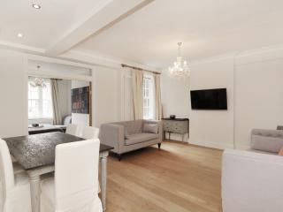 Knightsbridge  3 Bedroom 2 Bathroom AC Free WiFi - London vacation rentals