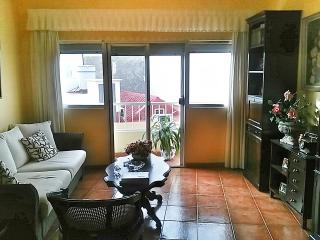 Nice House with Internet Access and Parking - Ingenio vacation rentals
