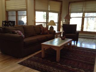 Spacious, Quiet 2 Level 2 Br,2 Ba Mountain View - Keystone vacation rentals
