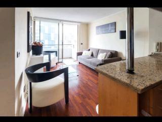 Sleek 2 Bedroom Apartment in Providencia - Santiago vacation rentals