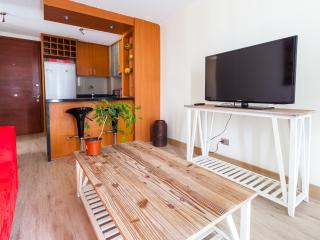 Cozy 2 Bedroom Apartment Near Araucano Park - Santiago vacation rentals