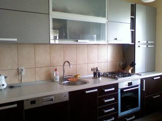 City Apartment Trifoiului in residencial area - Cluj-Napoca vacation rentals