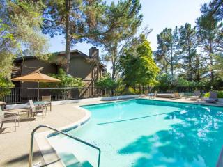 Furnished 2-Bedroom Condo at Brittan Ave & Crestview Dr San Carlos - San Carlos vacation rentals