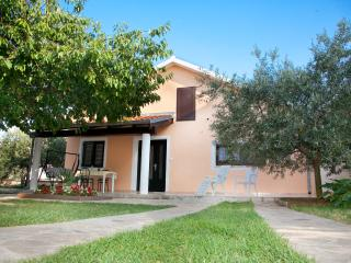 Nice House with Internet Access and A/C - Liznjan vacation rentals