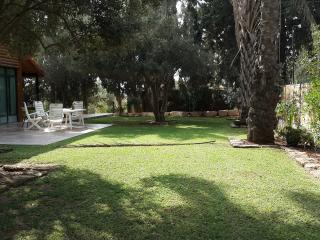 """""""Cydonia Suite"""" - the tourist home place in Israel - Rishon Lezion vacation rentals"""