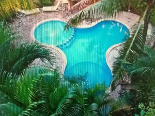 Beutiful 2 Bedroom, with pool downtonw - Playa del Carmen vacation rentals