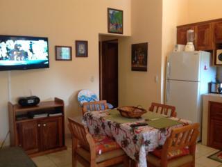 2 bedroom Condo with Television in Playas del Coco - Playas del Coco vacation rentals