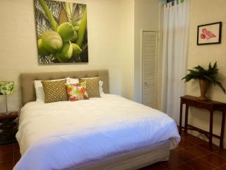 The Palm Apartment, Kiels Mountain - Maroochydore vacation rentals