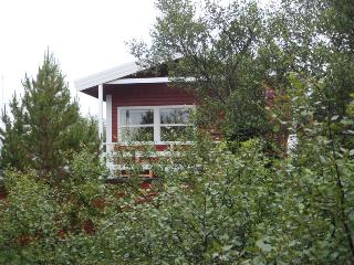 Prime location - The Red Cottage + separate cabin - Laugarvatn vacation rentals
