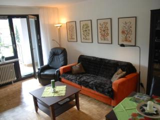 Vacation Apartment in Bad Harzburg - 355 sqft, bus stop next to the house, parking space available,… - Bad Harzburg vacation rentals