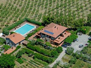 2 bedroom Apartment with Internet Access in Montegabbione - Montegabbione vacation rentals