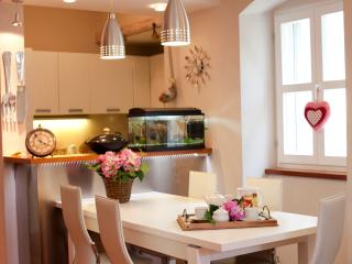 Villa*Tradition & Style* with Mediterranean garden In the center of old town - Split vacation rentals