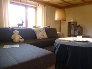 Urlaub & Ferien in einer gemütlichen Ferienwohnung - Gersfeld vacation rentals