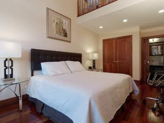Central executive 3br/2baths condo, short local transit to the White House and downtown - Washington DC vacation rentals