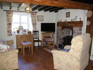 Luxury 4 Bedroom Cottage (sleeps 8+1) Quiet rural - Eglwysbach vacation rentals