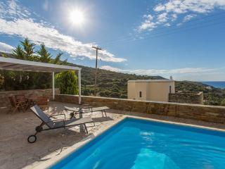 Andros Villa swimming pool Aegean sea view - Andros Town vacation rentals