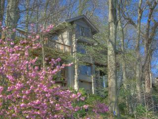 Comfortable Condo with Internet Access and A/C - Waynesville vacation rentals