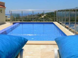Luxury Apartment, Great Views,Private Rooftop Pool - Kalkan vacation rentals