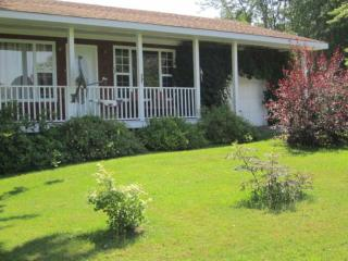 Perfect Cottage with Internet Access and Dishwasher - Cambridge-Narrows vacation rentals