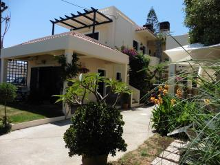 Lovely Condo with Internet Access and A/C - Kokkini Hani vacation rentals