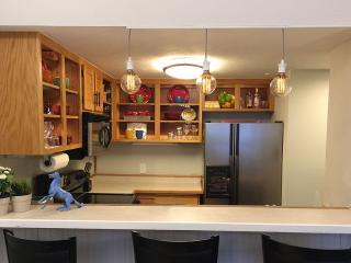 One Of A Kind Oasis - Crested Butte vacation rentals