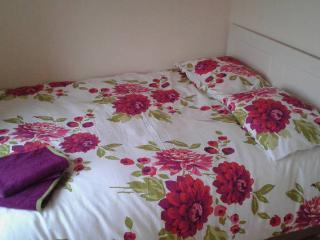 Bright Modern 1 Bedroom Apartment - Dublin vacation rentals