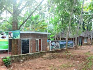 Thriphala Ayurveda panchakarma Centre - Kovalam vacation rentals