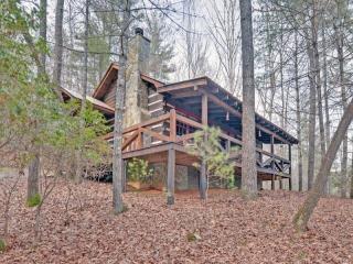 Beautiful Real Log Cabin. Hot tub. Wifi. Fire pit. - Blue Ridge vacation rentals