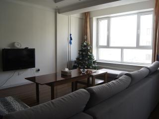 3 bedroom Condo with Internet Access in Ulaanbaatar - Ulaanbaatar vacation rentals