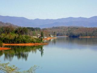 Beautiful Condo with Deck and A/C - Hiawassee vacation rentals