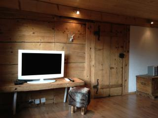 Apartment in mountain Chalet 9km from Interlaken - Habkern vacation rentals