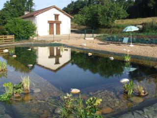 Grande Maison de campagne Périgord vert - Vaunac vacation rentals