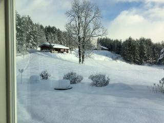Nice 3 bedroom Dalen House with Internet Access - Dalen vacation rentals