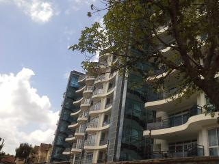 2 bedroom fully furnished apartm-Tomax Yaya Brooks - Nairobi vacation rentals