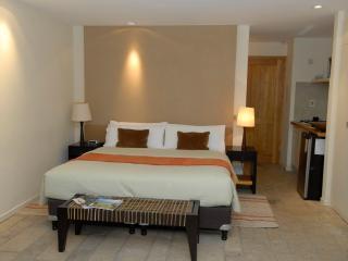 Romantic Studio Apartment in the Mountain - San Carlos de Bariloche vacation rentals