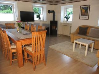 Allgäu Apartment  -  Premium Apartment - Memmingerberg vacation rentals