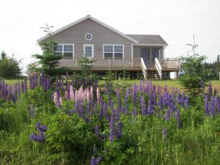 Beautiful Cottage with Internet Access and Long Term Rentals Allowed (over 1 Month) - Red Point vacation rentals