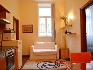 Modest Apartment Prague - Prague vacation rentals