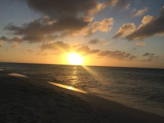 Casa En Las Rocas --- New Eagle Beach Villa - Palm/Eagle Beach vacation rentals