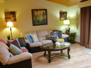 Upscale Townhome, Heart of Shawnee! - Shawnee on Delaware vacation rentals