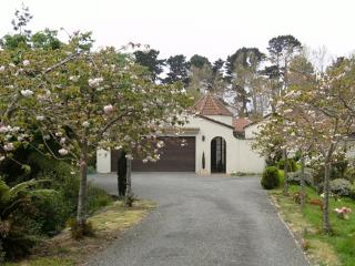 Willows End - Riverstay House - Kapiti Coast vacation rentals