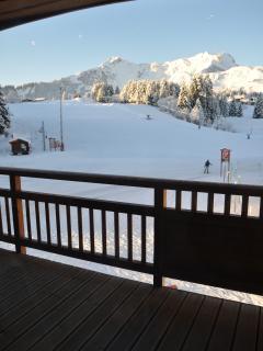 Praz de Lys Amazing Duplex Ski Apartment on slopes - Taninges vacation rentals